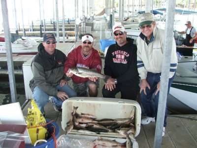Lake Texoma Striper