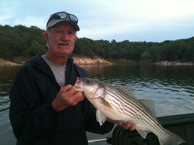 Lake texoma striper fishing photos for Striper fish pictures